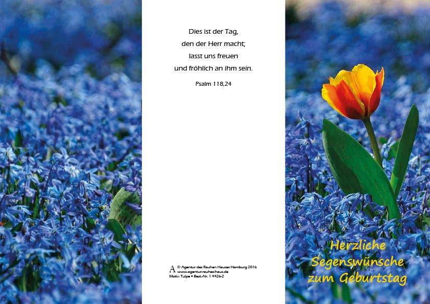 Agentur des Rauhen Hauses Hamburg Geburtstag Karten