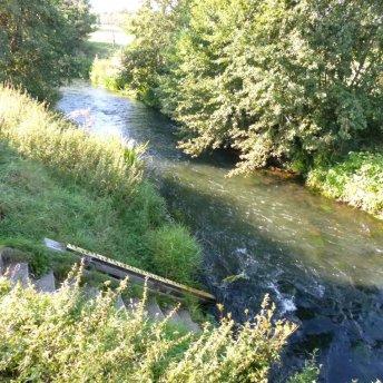 Die Stör in Padenstedt, flußabwärts nach Arpsdorf