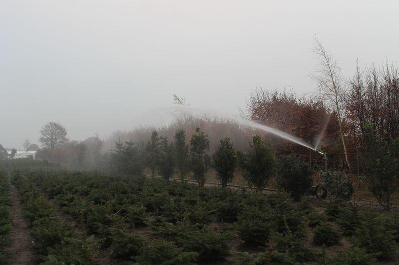 Baumschule Bewässerung