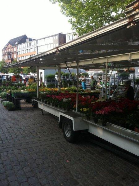 Pflanzenhof Paulwitz auf dem Samstags-Wochenmarkt in Neumünster