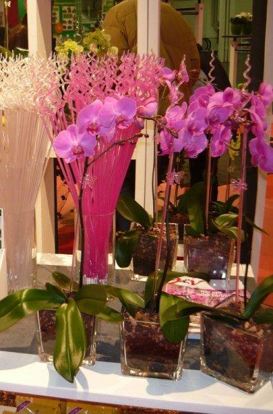Orchideenzubehör