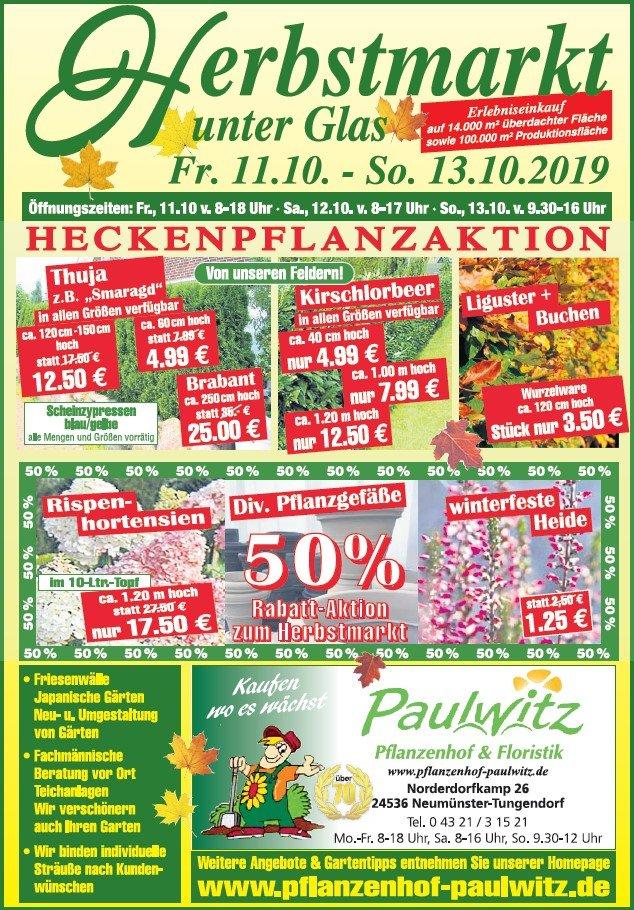 Herbstmarkt Angebote 2019