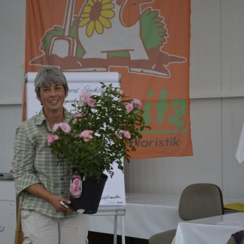 Frau Krüger stellt die Beetrosen vor (Sorte Bonica)