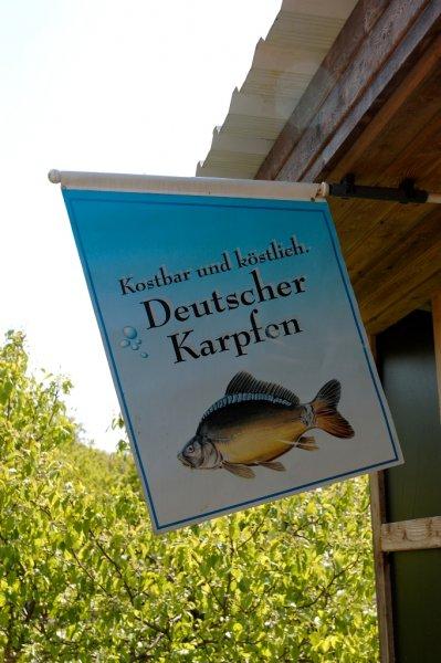 Deutscher Karpfen
